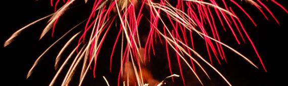 Les fleurs de Bach 100 apaisent votre chien lors des feux d'artifice et pétards
